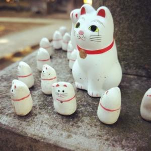 豪徳寺に奉納された小さな招き猫